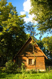Wooden house. In the forest in summer Royalty Free Stock Photo