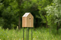 Wooden house for birds in the park/forest Royalty Free Stock Image
