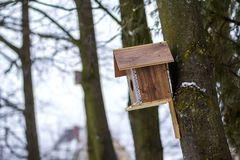 A wooden house for birds on the tree in the forest. Place to feed and to find food in winter time for birds. Bird feeder in park. Royalty Free Stock Photo