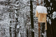 Wooden house for the birds in winter Park Stock Images