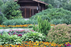 Wooden house in the blossomed garden Stock Image