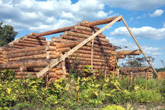 Wooden house construction from logs Stock Photo