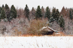 Wooden house on edge of snowed forest Royalty Free Stock Photo