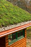 Wooden house with extensive green living roof covered with vegetation. Wooden house with extensive green ecological living sod roof covered with vegetation stock photos