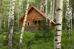 The wooden house in a forest. The house from the logs, surrounded with a wum fence, among birches and other trees Stock Photo