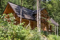 Wooden house in the forest stock photos