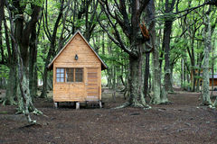 Wooden house in the forest. Stock Image