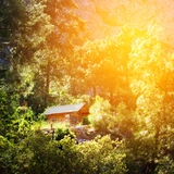 Wooden house in a forest, active vacations Stock Photo