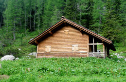 Wooden house in the forest. Wooden house in green forest. House made of wood logs standing in the green alpine mountain forest Stock Photography