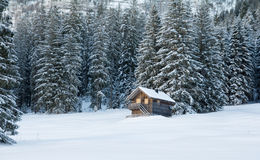 Wooden house in forest with lot of snow Royalty Free Stock Images