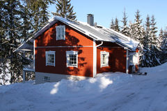 Wooden house in the forest in the winter sun Stock Image