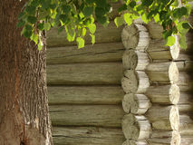 Wooden house fragment. Traditional wooden house wall fragment Royalty Free Stock Image