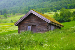 Wooden house with grass roof. Wooden house on a hillside with a grass roof stock photos