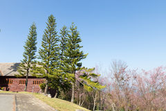 Wooden house on the hill Royalty Free Stock Image
