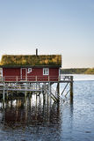 Wooden house at the Lofoten archipelago, Norway Stock Images