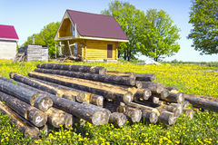 Wooden house in the meadow with dandelions. Russia Stock Photo