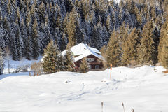 Wooden house in the mountains with snow and trees in winter in Stubai Alps Stock Images