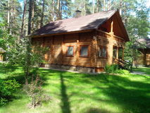 A wooden house in pine forest Stock Images