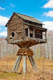 Wooden house on poles in field Stock Image
