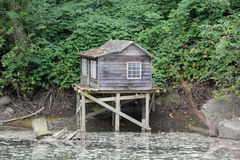 Wooden House in the River Stock Images