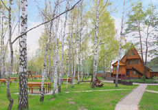 Wooden house in the spring forest, Ukraine royalty free stock images