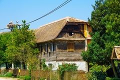 Wooden House, with Storks, Croatia Stock Photo