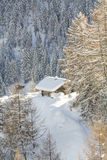 Wooden house at Switzerland Alps. Rustic style house on mountains in the forest Royalty Free Stock Photos