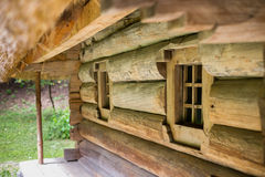 A wooden house with a thatched roof Stock Photo