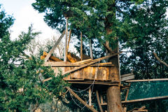 Wooden house on a tree. Children`s home built Royalty Free Stock Images