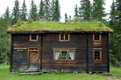 Wooden house with turf roof. Exterior of old wooden house with grass or turf roof, forest in background, Norway Stock Photos