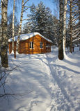Wooden house in winter forest Royalty Free Stock Photo