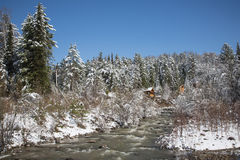Wooden house in winter forest, mountain, river, snow covered tre Royalty Free Stock Photo