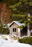 Wooden house in a  winter pine  forest Stock Photo