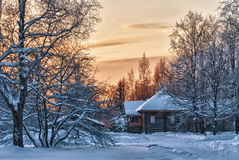 Wooden house in winter wood Royalty Free Stock Images
