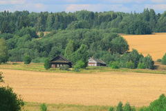 Wooden houses among forest Stock Image