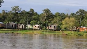 Wooden houses on stilts along the Amazon river and rain forest, Brazil stock video