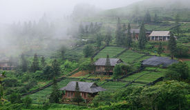 Wooden houses in village with mountain background Stock Images
