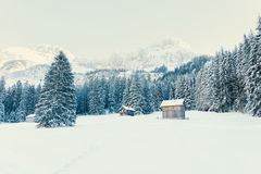 Wooden houses in winter nature Stock Photography