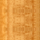 Wooden HQ Sandy Birch texture Royalty Free Stock Photography