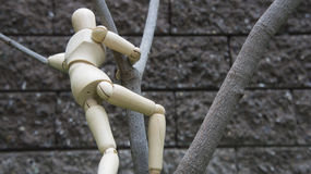 Wooden human figure climb tree garden stock images