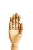 Wooden, human hand. Stock Photo