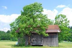 Wooden hut Royalty Free Stock Photo
