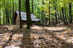 Wooden hut in a forest. Little wooden cottage somewhere in a deep Carpathian forest Stock Photos
