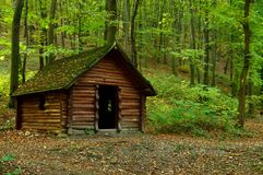 Wooden hut in the forest. A small brown wooden hut in the green forest Stock Images