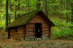 Wooden hut in the forest. A small brown wooden hut in the green forest Stock Image