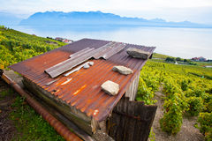 Wooden Hut In Lavaux, Switzerland. A wooden hut facing Lake Geneva at the Vineyard Terraces (a UNESCO World Heritage Site) in Lavaux, Switzerland. The visible Stock Photo