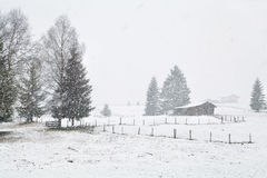 Wooden hut on meadow at snowstorm Stock Images