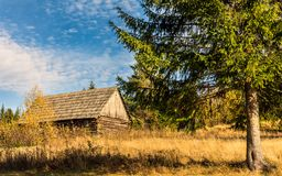 Wooden hut. Royalty Free Stock Images