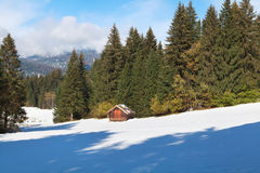 Wooden hut in winter alpine forest Stock Image