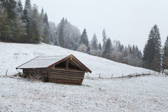Wooden hut on winter alpine meadow Stock Images
